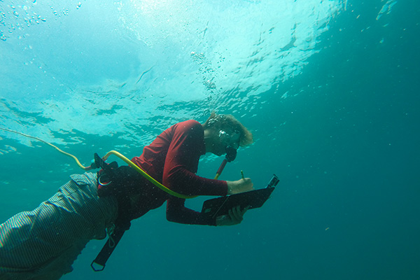 A student completing research underwater.