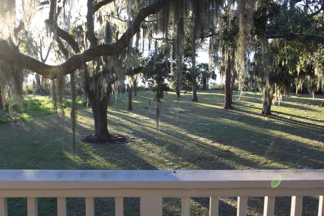 backyard view with a white porch railing