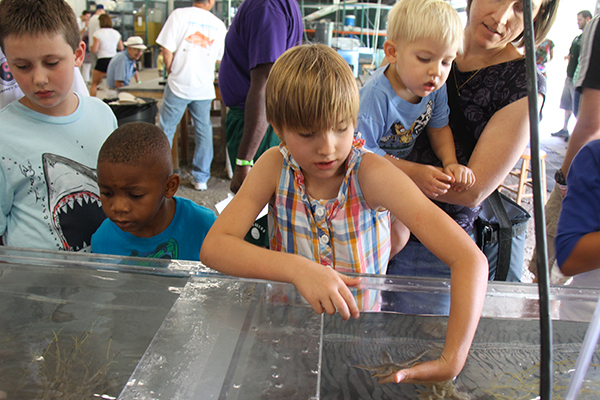 Kids experiencing marine life at summer camp